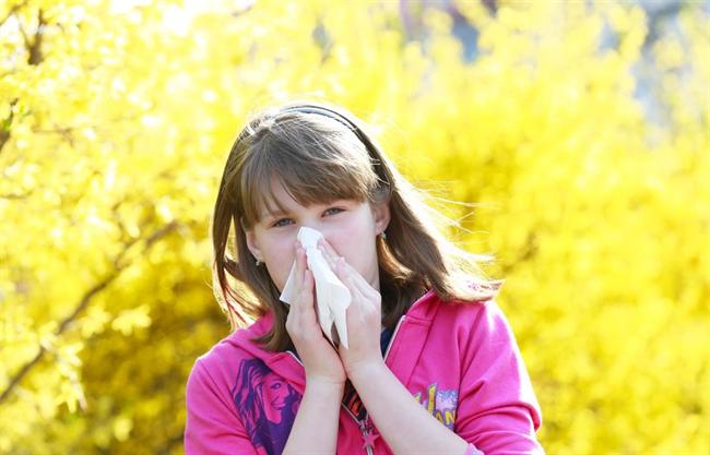 Pollenallergia tüneteinek csökkentése